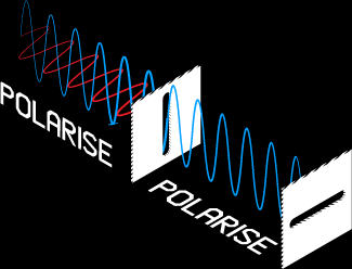 Diagram of Polarisation